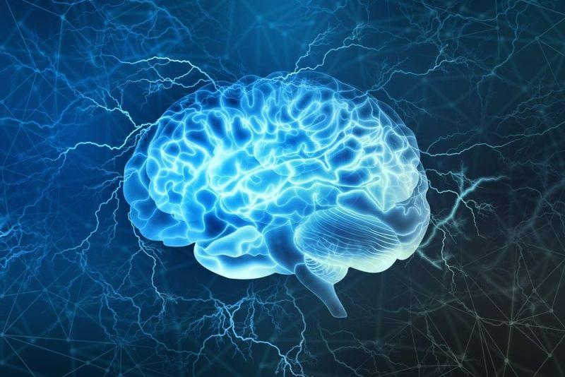 Glucose brain