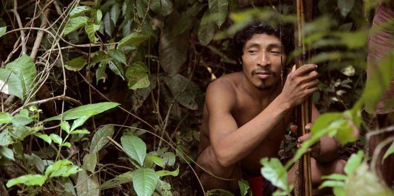 Amazon Rainforest Tribes Secret Life