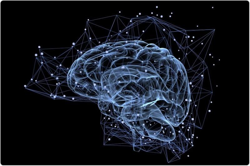 Brain music education