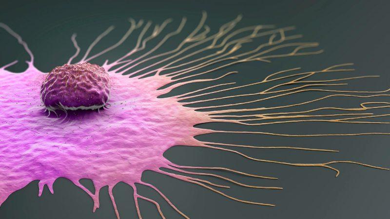 Cancer representation