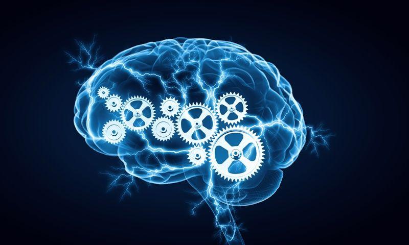 Cognitive Psychology Experiments