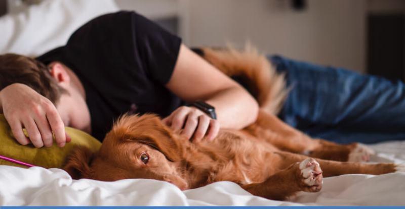 Cuddling dog for stress