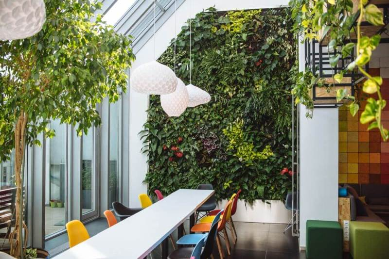 Office with plants