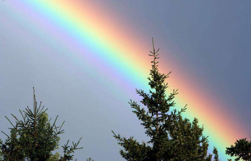 Science Behind the Rainbow