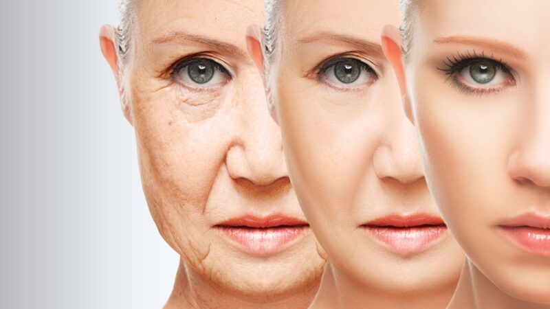 How Reverse Aging is Possible in Human Cell Lines