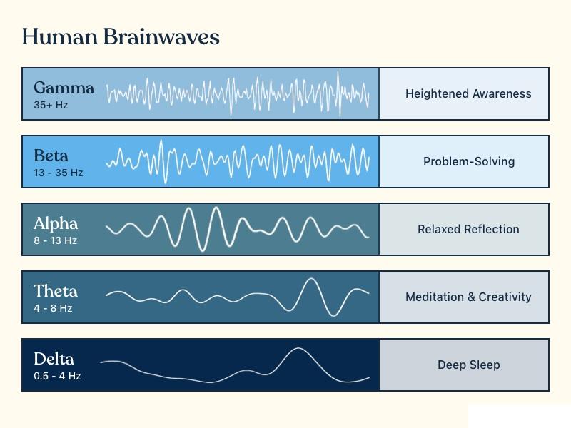 Brain wave delta