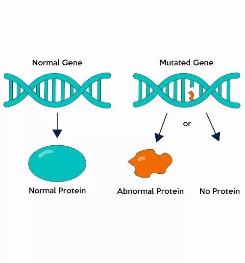 Gene mutation superhuman