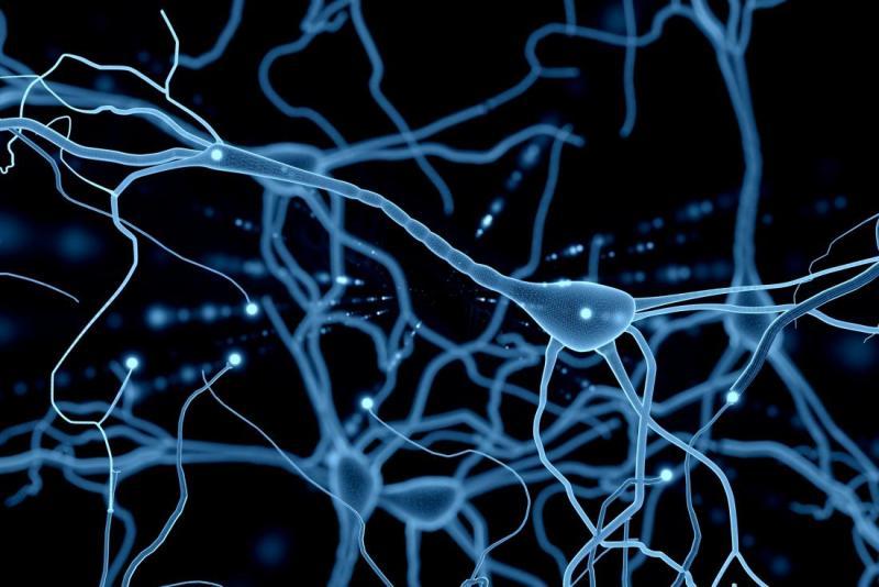 Illustration of Neuron network