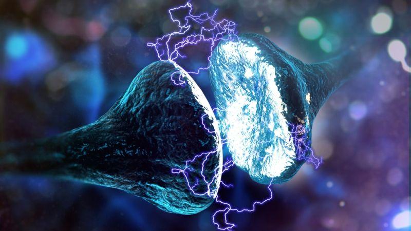 Neuron electricity