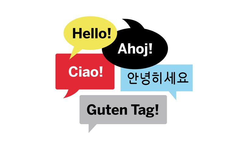 New language brain cover